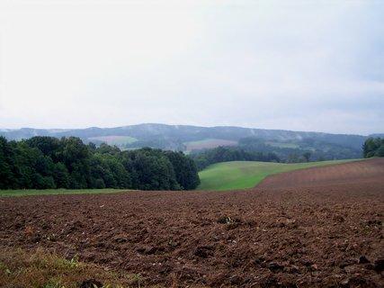 FOTKA - Ned�ln� r�no cestou do lesa