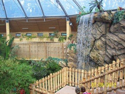 FOTKA - zelená pyramída v zoo
