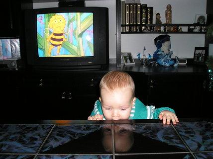 FOTKA - Včelka Mája mě tak netankuje, to ten stůl je chuťově zajímavý