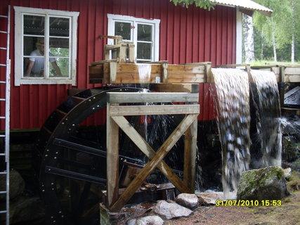FOTKA - Co najdete v lese ve Švédsku 2