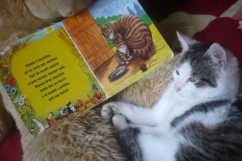 FOTKA - Elda s knížkou..