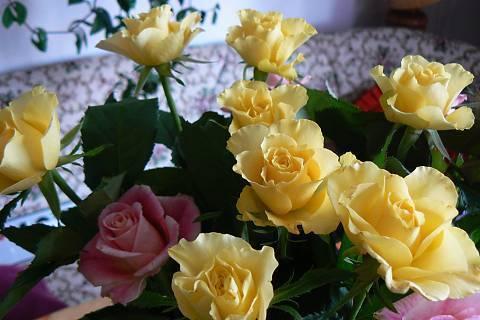 FOTKA - kytice,žluté růže