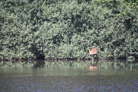 FOTKA - Ptačí budka