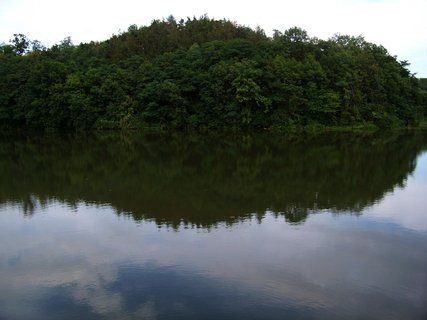 FOTKA - rybník - odraz lesa...