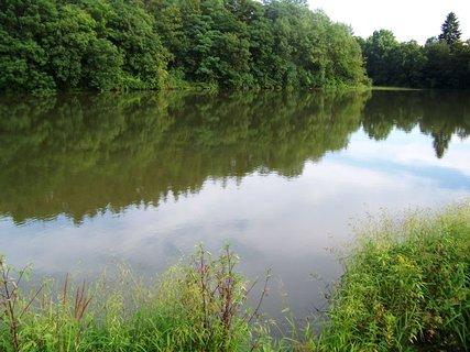 FOTKA - mírumilovný rybníček..,,