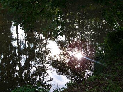 FOTKA - slunce ve vodě...