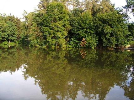 FOTKA - rybník po deštích_ Dolnomlýnský