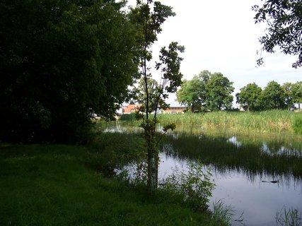 "FOTKA - rybníček ""Vestecký"" u Prahy .,,na břehu rybníka"