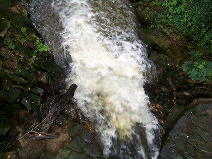 FOTKA - potok v průhonickém parku