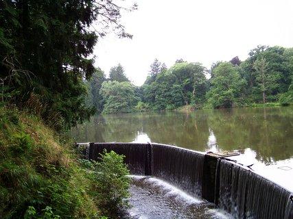 FOTKA - rybník a okolí_průhonický park