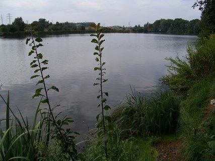 FOTKA - pohled na zadní část rybníku Šeberák