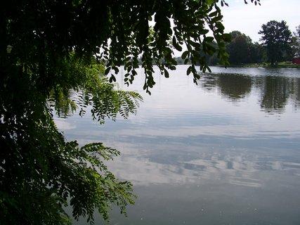 FOTKA - rybník Šeberák v Kunraticích_strana od Kunratic