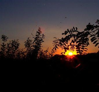 FOTKA - Dnešní západ slunce 20.8.2010