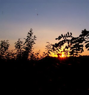 FOTKA - Západ slunce dnes :-)