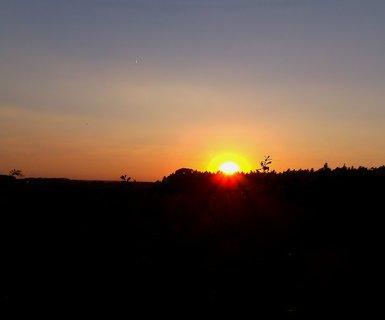 FOTKA - Slunce za lesem