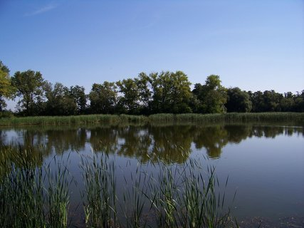 FOTKA - projížďka dnes na kole_u rybníka