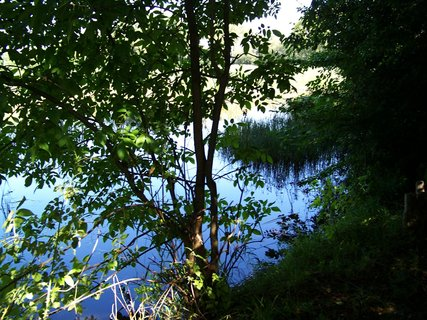 FOTKA - včerejší vyjížďka na kole_rybník za stromy .,,,