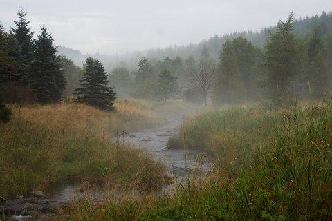 FOTKA - Flájský potok