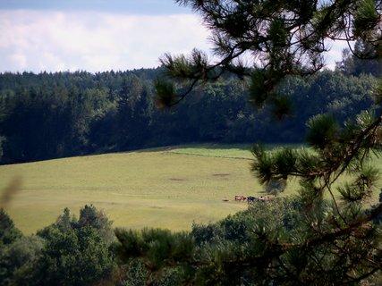 FOTKA - Z hradu Žumberk pohled na pastviny