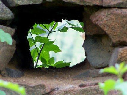 FOTKA - Okno do přírody