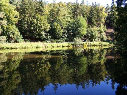 FOTKA - sobotní procházka - kolem rybníka