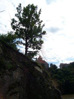 FOTKA - cestou na hrad Veveří 2