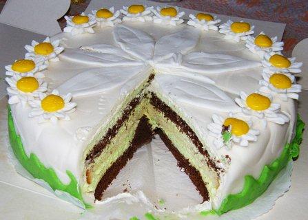 FOTKA - Samotný nakrojený dort