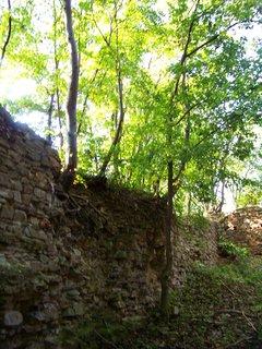 FOTKA - zříceniny Nového hradu u Kunratic,.....,