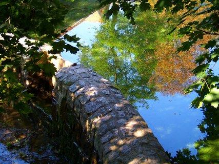 FOTKA - cestou kolem rybníka - na hrázi .,,.