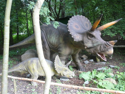 FOTKA - .Dinopark Vyškov