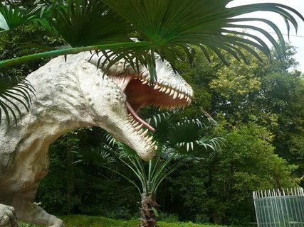 FOTKA - Dinopark Vyškov+.