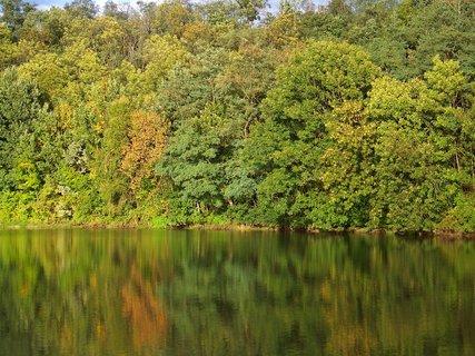 FOTKA - stromy se pomalinku zbarvují...