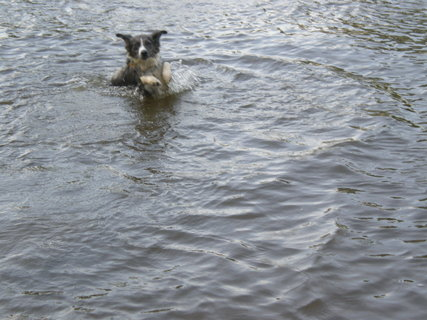 FOTKA - jejda..já plavul