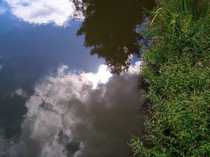 FOTKA - odraz sluníčka u břehu rybníka .,,...