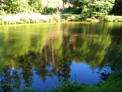 FOTKA - Kunratický rybník - procházka,,,.,,