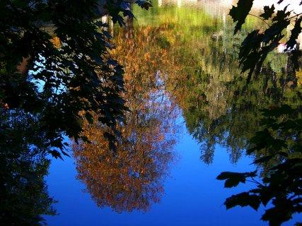 FOTKA - Kunratický rybník - odrazy ..,