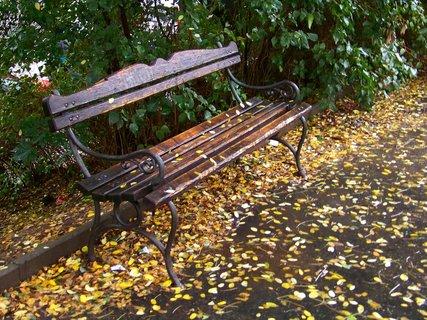 FOTKA - uplakaná podzimní atmosféra ...