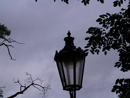 FOTKA - mokr� je i lampa v parku...