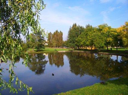 FOTKA - poklidné dopoledne u rybníka, Kunratice....