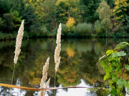 FOTKA - Podzimní atmosféra