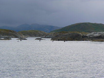 FOTKA - Norsko,2