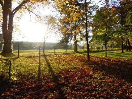 FOTKA - Podzim I