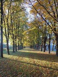 FOTKA - Podzim IV