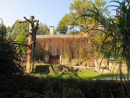 FOTKA - Pavilon v zoo