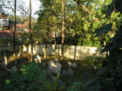 FOTKA - Židovský hřbitov na podzim