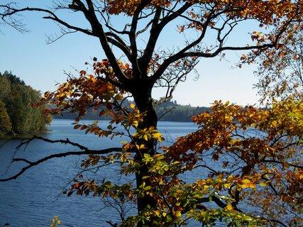 FOTKA - Barevný a voňavý podzim