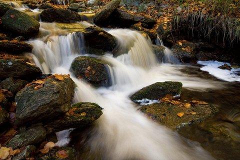 FOTKA - Horsk� potok