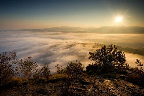 FOTKA - Proti slunci
