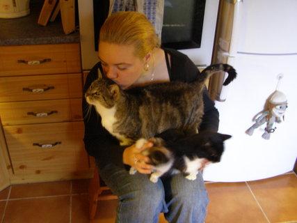 FOTKA - v kočičím obležení