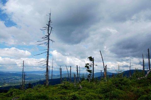 FOTKA - hory na dlani